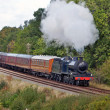 Steam excursion — Stock Photo #7202251