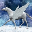 Pegasus — Stock Photo