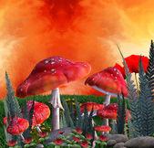 Mushrooms place — Stock Photo