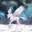 Wonderful pegasus — Stock Photo