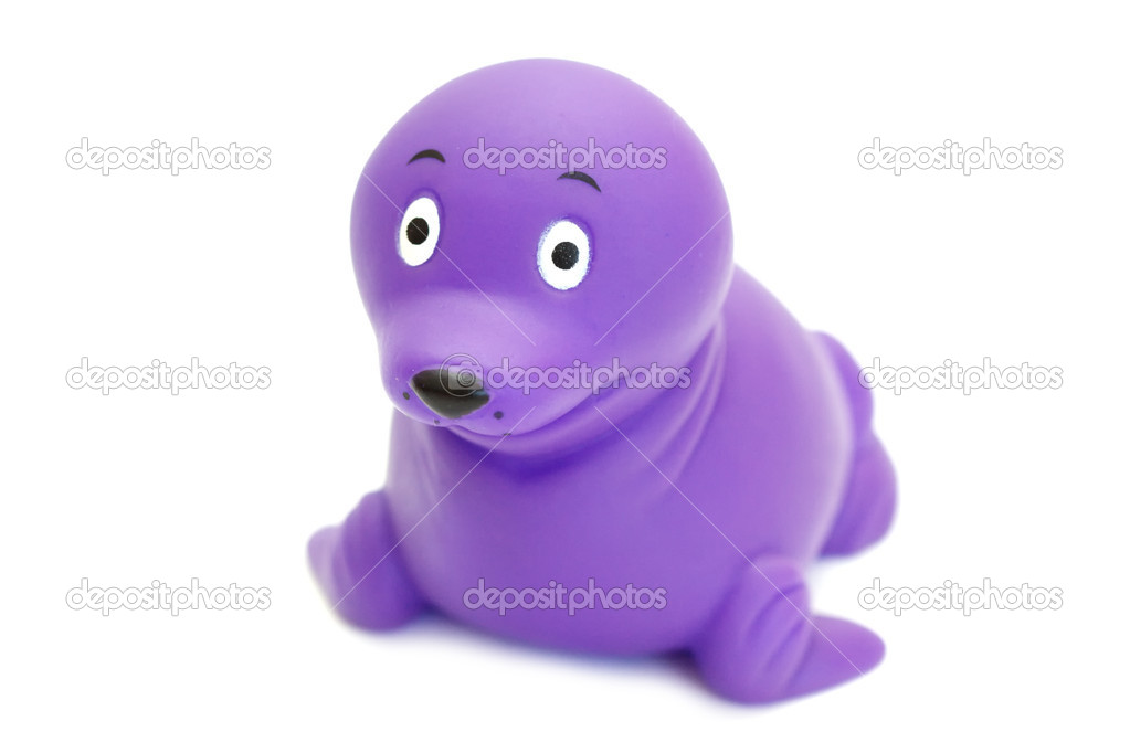 Toy seal isolated — Stock Photo #7239716