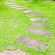 图库照片: Walking stone on green grass