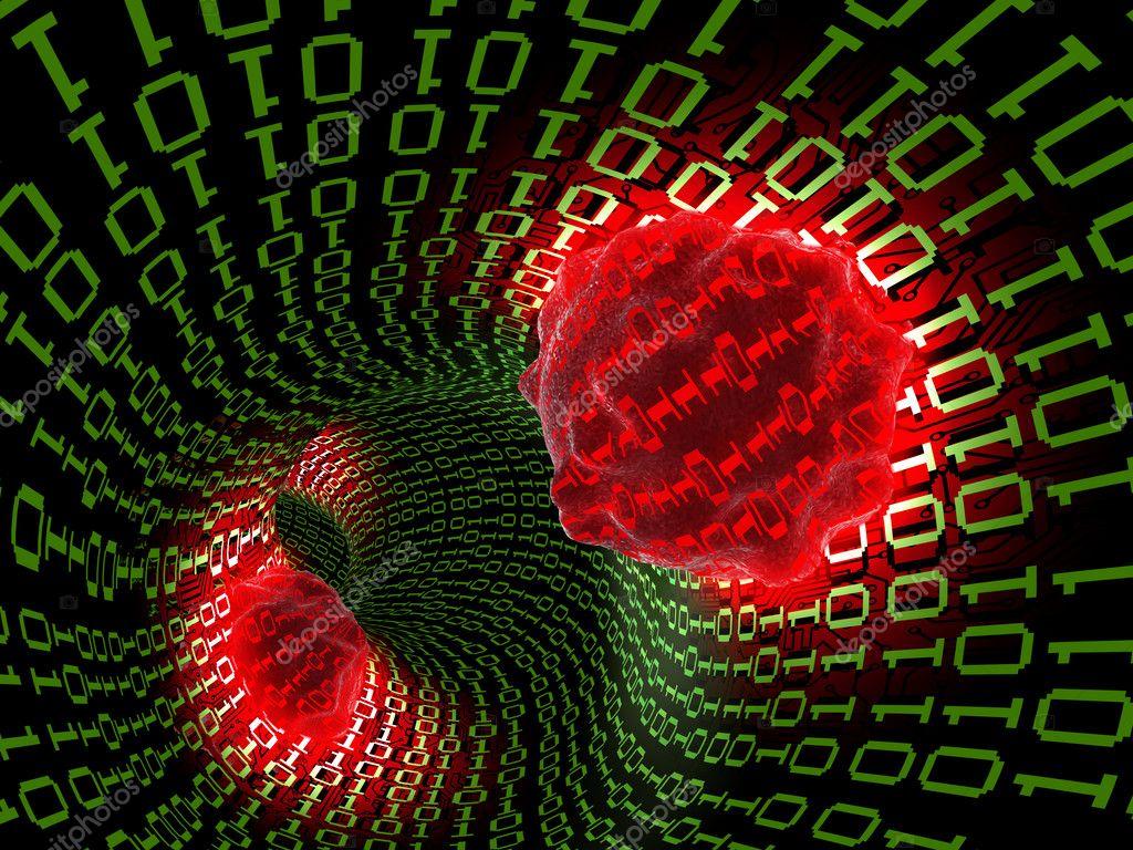 Вирусы компьютерные