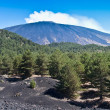 The volcano Etna landscape - Stock Photo