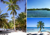 Dominican Collage — Stock Photo