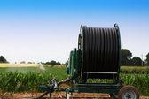Farmland irrigation — Stock Photo