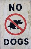 No собак знак — Стоковое фото