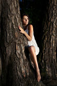 Woman and tree — Stock Photo