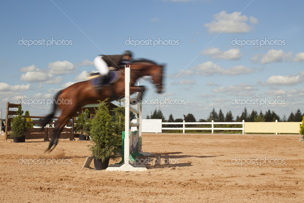 Blurred horse jumping high over the hurdle  Stock Photo #6823578
