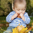 A tasty autumn — Stock Photo