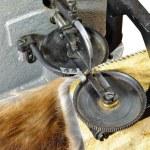 Working part furrier's sewing machine — Stock Photo