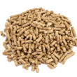 Wood pellets. - Stock Photo