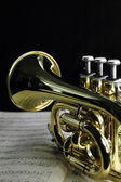 Trumpet with music sheet — Stock Photo
