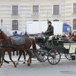 Horse carriage Vienna. Austria. — Stock Photo