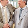 Portrait of two businessmen handshaking. Office background. - Stock Photo