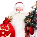Christmas theme: Santa Claus holding christmas tree and his bag — Stock Photo