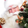 Christmas theme: Santa Claus holding christmas tree and his bag — Stock Photo #7039641