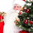 Christmas theme: Santa Claus holding christmas tree and his bag — Stock Photo #7039650