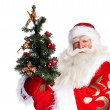 Christmas theme: Santa Claus holding christmas tree and his bag — Stock Photo #7039954