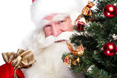 Christmas theme: Santa Claus holding christmas tree and his bag — 图库照片