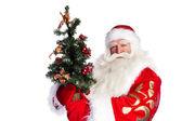 Christmas theme: Santa Claus holding christmas tree and his bag — 图库照片