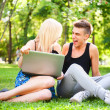 Young happy smiling couple with laptop at picnic - Stock fotografie