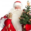 Christmas theme: Santa Claus holding christmas tree? staff and h — Stock Photo