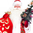 Christmas theme: Santa Claus holding christmas tree and his bag full of gif - Stock fotografie