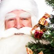 Christmas theme: Santa Claus holding christmas tree and his bag — Foto Stock