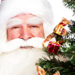 Christmas theme: Santa Claus holding christmas tree and his bag — Foto de Stock