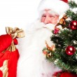 Royalty-Free Stock Photo: Christmas theme: Santa Claus holding christmas tree and his bag