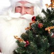 Christmas theme: Santa Claus holding christmas tree and his bag - Stock Photo