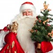 Christmas theme: Santa Claus holding christmas tree? staff and h — Stock Photo #7558345