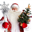 Christmas theme: Santa Claus holding christmas tree and his bag — Stock Photo #7558351
