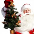 Stock Photo: Christmas theme: Santa Claus holding christmas tree and his bag
