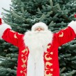 Portrait of Santa Claus standing with open hands outdoors at chr - Stock Photo