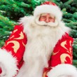 Portrait of natural Santa Claus standing at Christmas Tree outdo — Stock Photo #7558412