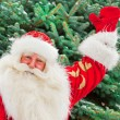 Portrait of natural Santa Claus standing at Christmas Tree outdo — Stock Photo #7558416
