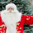 Portrait of Santa Claus standing with open hands outdoors at chr — Stock Photo
