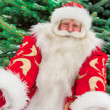 Portrait of natural Santa Claus standing at Christmas Tree outdo — Stock Photo #7558985