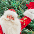 Portrait of natural Santa Claus standing at Christmas Tree outdo - Stock Photo