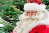 Santa Claus portrait smiling against christmas tree outdoor in s — Stock Photo