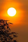 High sunrise — Stock Photo