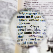 Stock Photo: Magnifying SantClaus