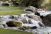Fresh Water Stream — Stock Photo