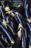 Italy, Venice, italian eggplants for sale in a store — Stock Photo