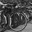 Holland, Amsterdam, bicycles parking near the Central Station — Stock Photo #7229803
