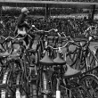 Holland, Amsterdam, bicycles parking near the Central Station — Stock Photo #7229851