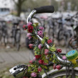 Holland, Volendam (Amsterdam), bicycles parking - Stock Photo