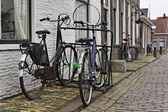 Holland, Edam village (Amsterdam), bycicles parked — Stock Photo